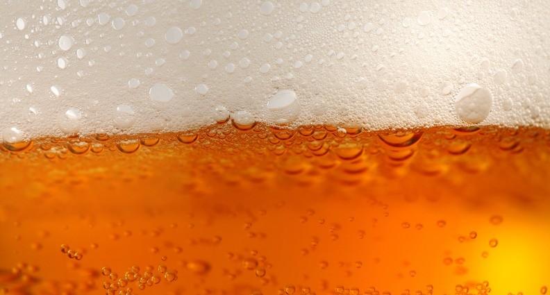 Lúpulo, la flor que define el carácter de la cerveza